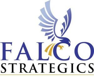 Falco Strategics Website Designer San Diego CA